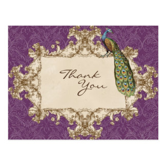 Vintage Peacock Etchings Thank You Notes Post Card