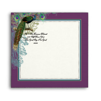 Vintage Peacock Feathers Matching Envelope