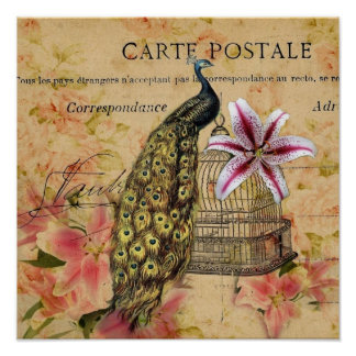 vintage peacock floral poster