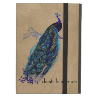 Vintage Peacock Full Feathers on Tattered Lace iPad Air Cases