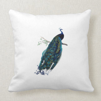 VIntage Peacock Illustration Throw Pillow