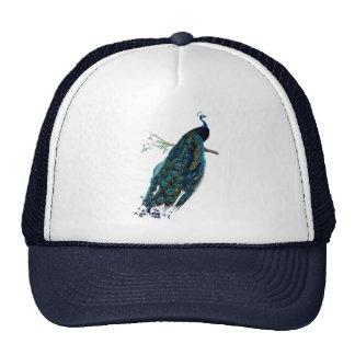 Vintage Peacock Illustration Trucker Hat