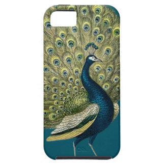 Vintage Peacock iPhone SE/5/5s Case