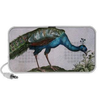 Vintage Peacock iPhone Speaker