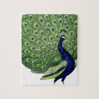 Vintage Peacock Jigsaw Puzzle