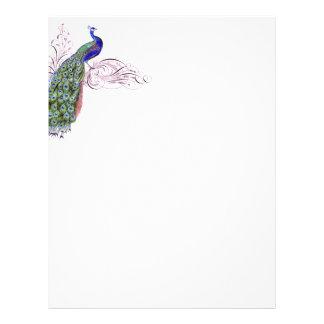 Vintage Peacock Letterhead Template