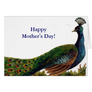 Vintage Peacock Mother's Day Card