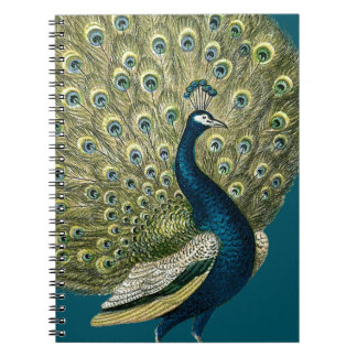 Vintage Peacock Notebook