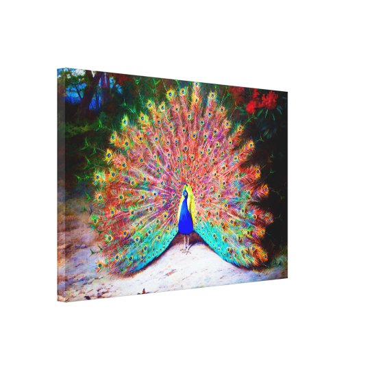 vintage peacock painting canvas print