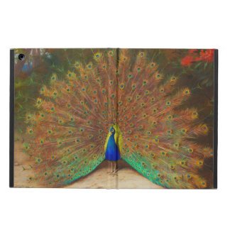 Vintage Peacock Painting Cover For iPad Air