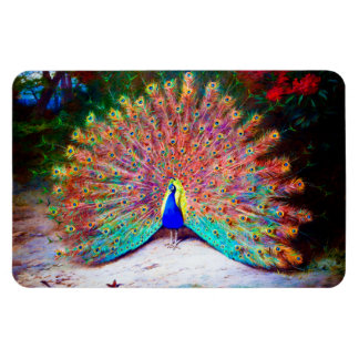 Vintage Peacock Painting Magnet