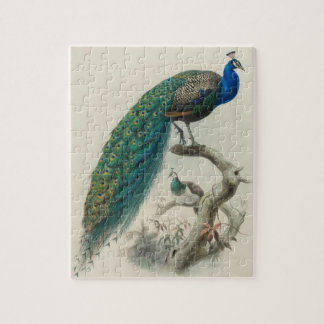 Vintage Peacock Jigsaw Puzzles