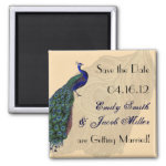 Vintage Peacock Save the Date Magnets zazzle_magnet