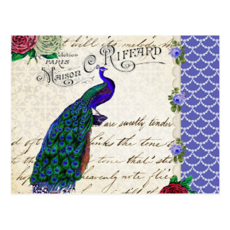 Vintage Peacock Song Collage Postcard