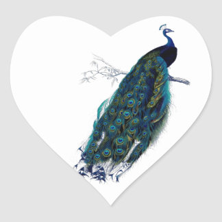Vintage Peacock Heart Sticker