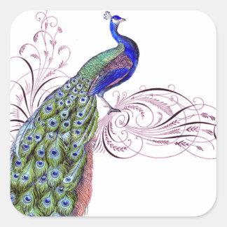Vintage Peacock Square Sticker