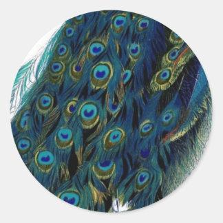 Vintage Peacock Classic Round Sticker