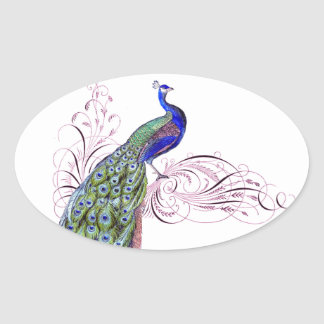 Vintage Peacock Oval Sticker