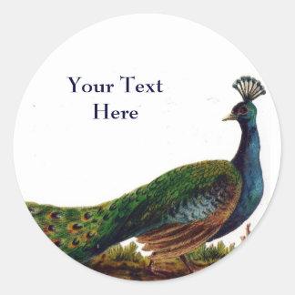 Vintage Peacock Stickers