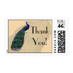 Vintage Peacock Thank You Postage zazzle_stamp