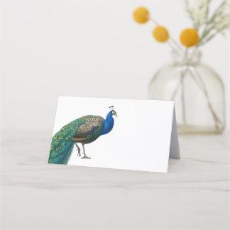 Vintage Peacock Wedding Place Card