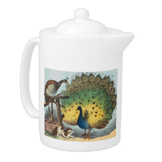 Vintage peacocks and a cat teapot