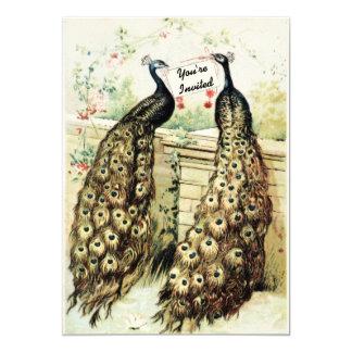 Vintage Peacocks Birthday Party Card