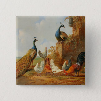 Vintage Peacocks & Chickens Pinback Button