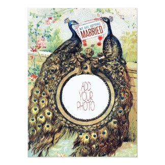 Vintage Peacocks in Love - wedding add your photo Card
