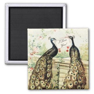 Vintage Peacocks Love Magnet