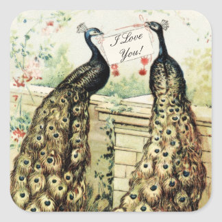 Vintage Peacocks Love Square Sticker