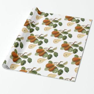 Vintage Pear Botanical Illustration Wrapping Paper