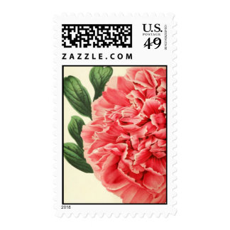 Vintage Peony / Retro Pfingstrose Postage Stamp