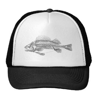 Vintage Perch Fish Skeleton - Fishes Template Trucker Hat