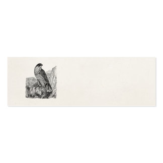 Vintage Peregrine Falcon Personalized Retro Birds Double-Sided Mini Business Cards (Pack Of 20)
