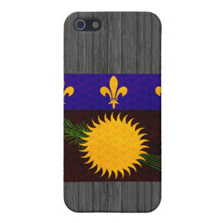 Vintage Pern Guadeloupean Flag iPhone 5 Case