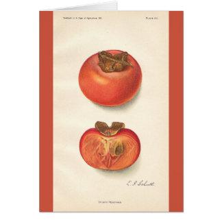 Vintage Persimmon Card