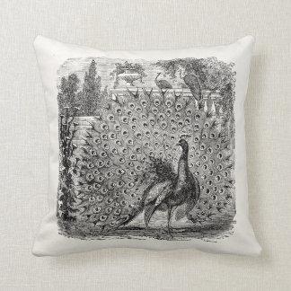 Vintage Personalized Peacock Bird - Tropical Birds Throw Pillow