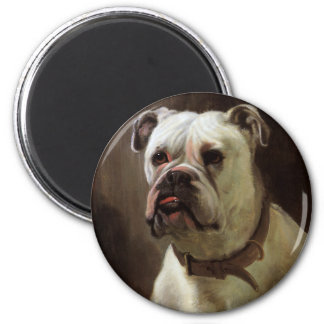 Vintage Pet Animals, Boxer Puppy Dog Portrait Magnet