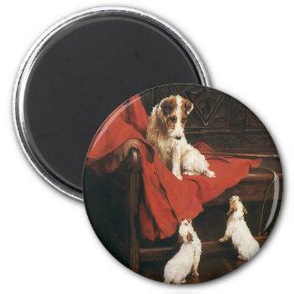 Vintage Pet Animals, Jack Russel Terrier Dogs Fridge Magnets