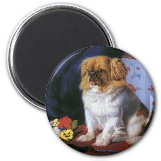 Vintage Pet Animals, Toy Pekingese Dog Refrigerator Magnet