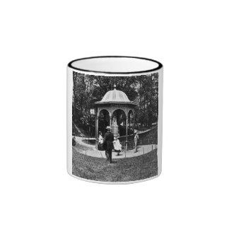 Vintage Philly CA 1900-1910 del parque de Fairmoun Tazas