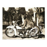 vintage photo of police officer on motorcycle puma post cards