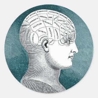 Vintage Phrenology Head Stickers