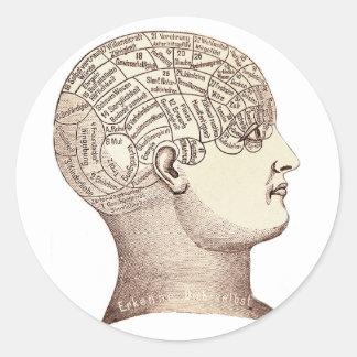 Vintage Phrenology Map Sticker