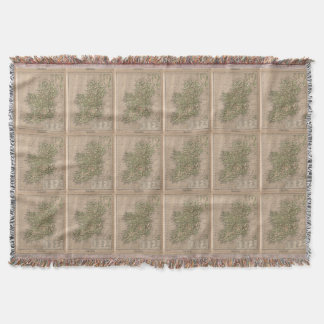Vintage Physical Map of Ireland (1880) Throw Blanket