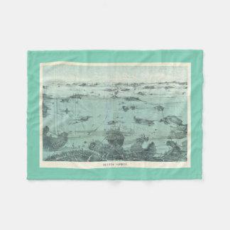 Vintage Pictorial Map of Boston Harbor (1897) Fleece Blanket