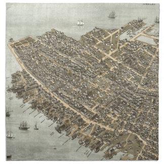 Vintage Pictorial Map of Charleston (1872) Cloth Napkin