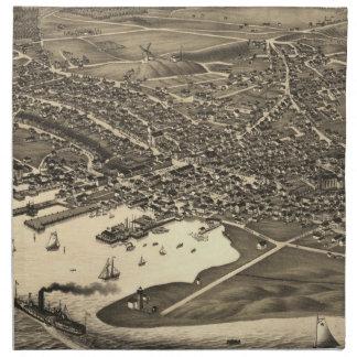 Vintage Pictorial Map of Nantucket (1881) Napkin