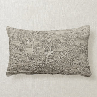 Vintage Pictorial Map of Newton MA (1878) Pillow